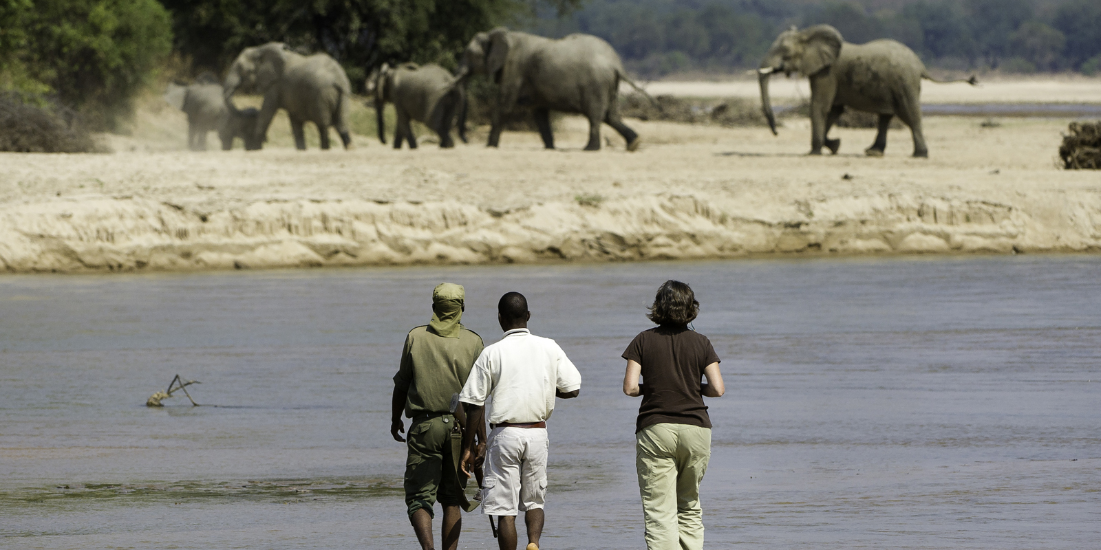 top zambia national parks - south luangwa