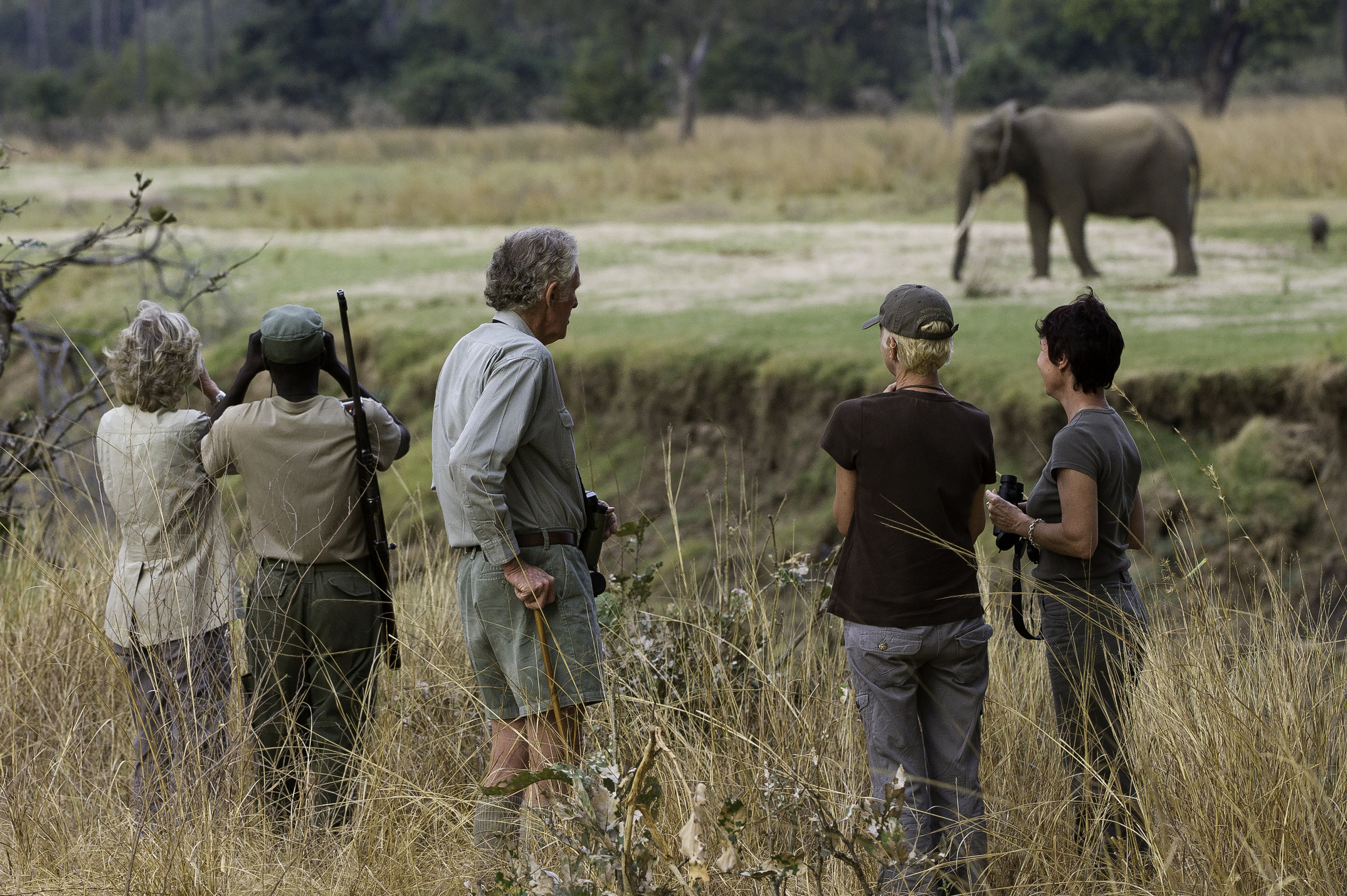 the ultimate walking safari - walking safaris