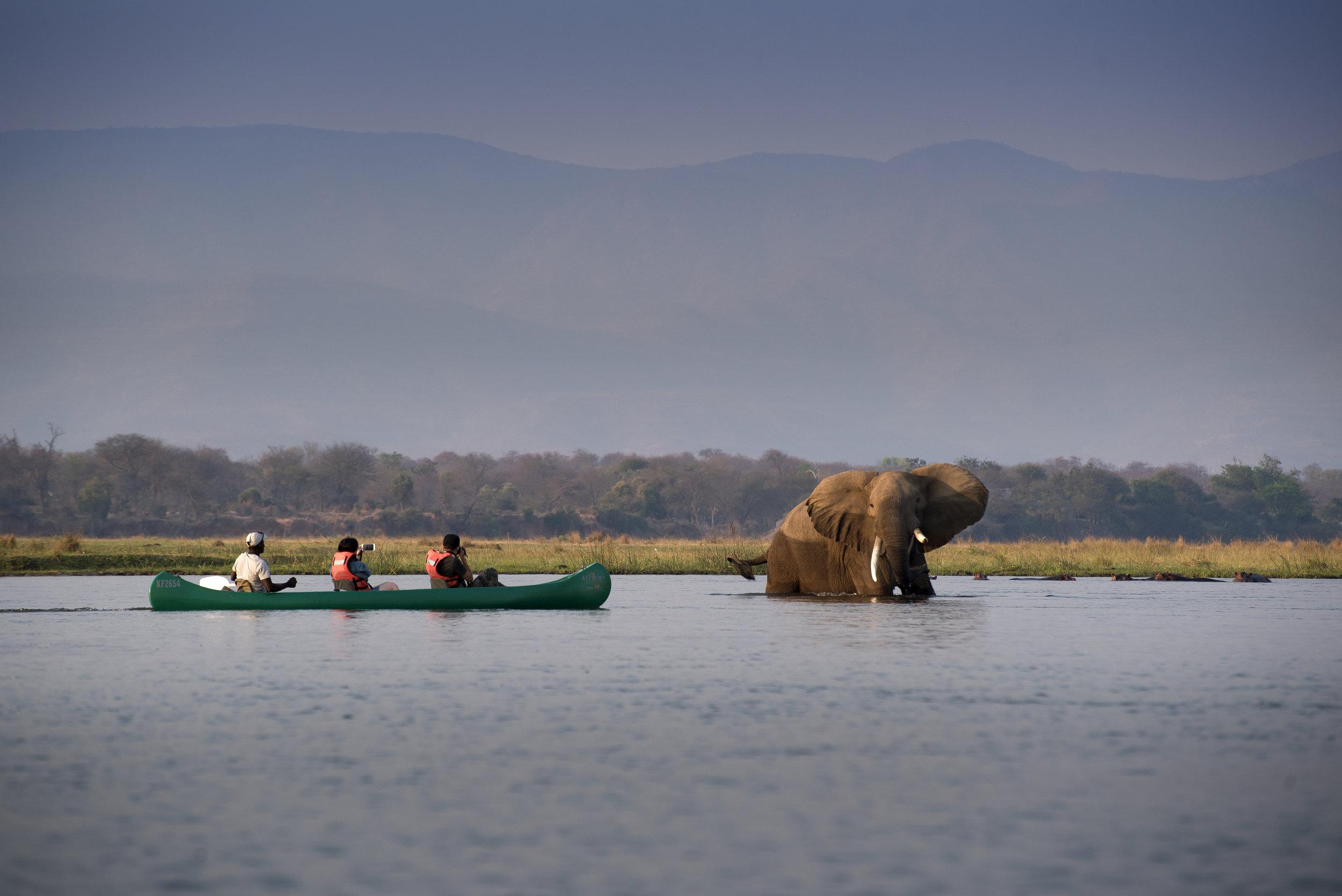 zambezi_expeditions_mana_pools_national_park_zimbabwe_safari_tented_camp_african_bush_camps_canoe_15.jpg