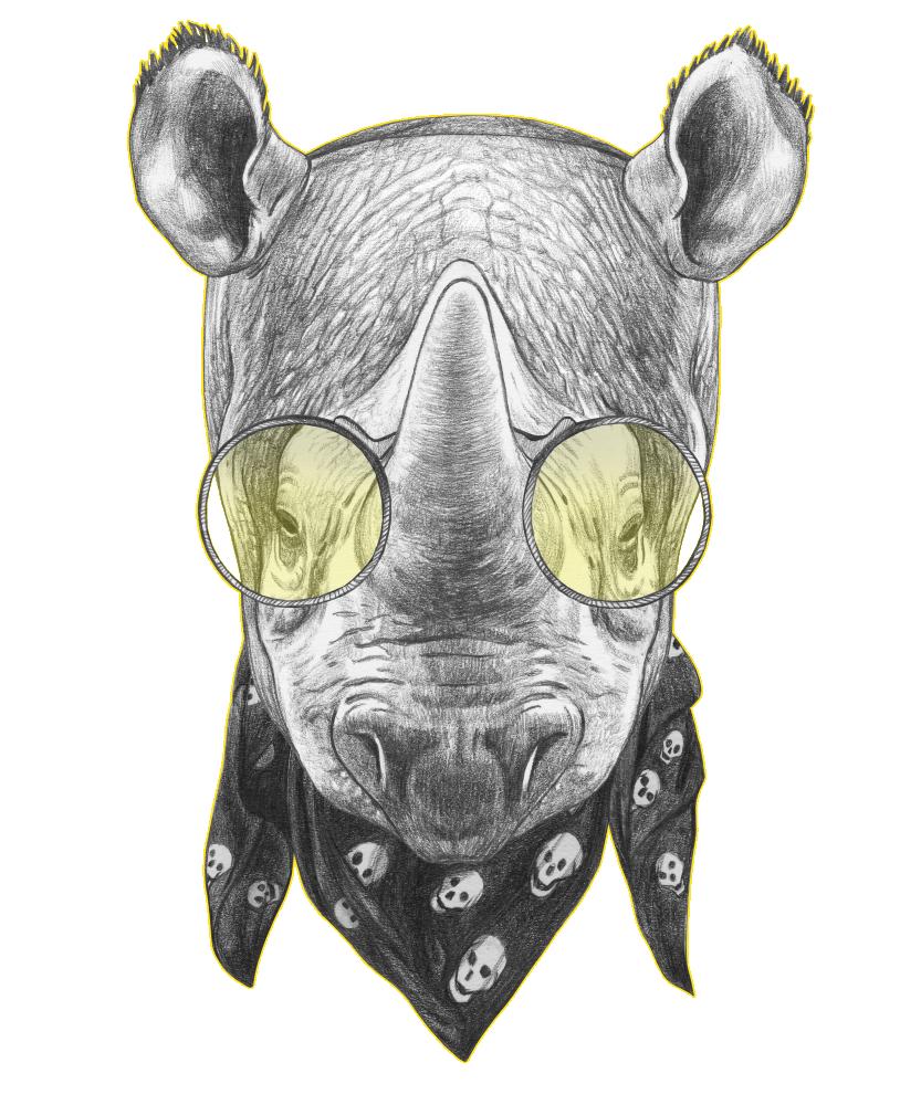 rhino_1.png