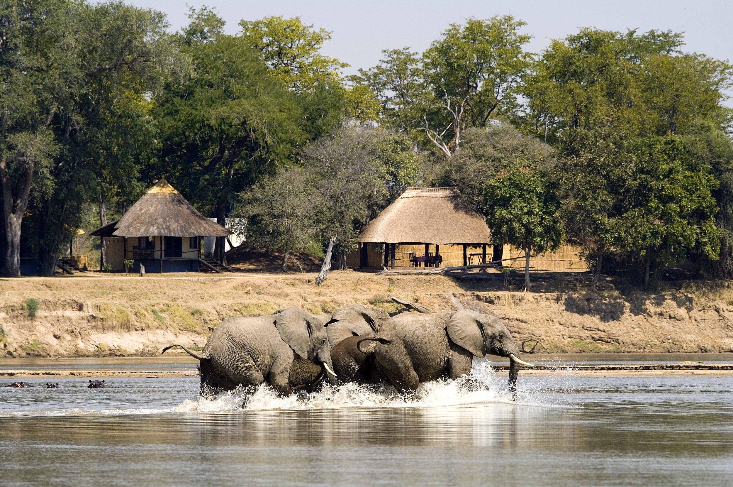 robin pope safaris - nsefu camp