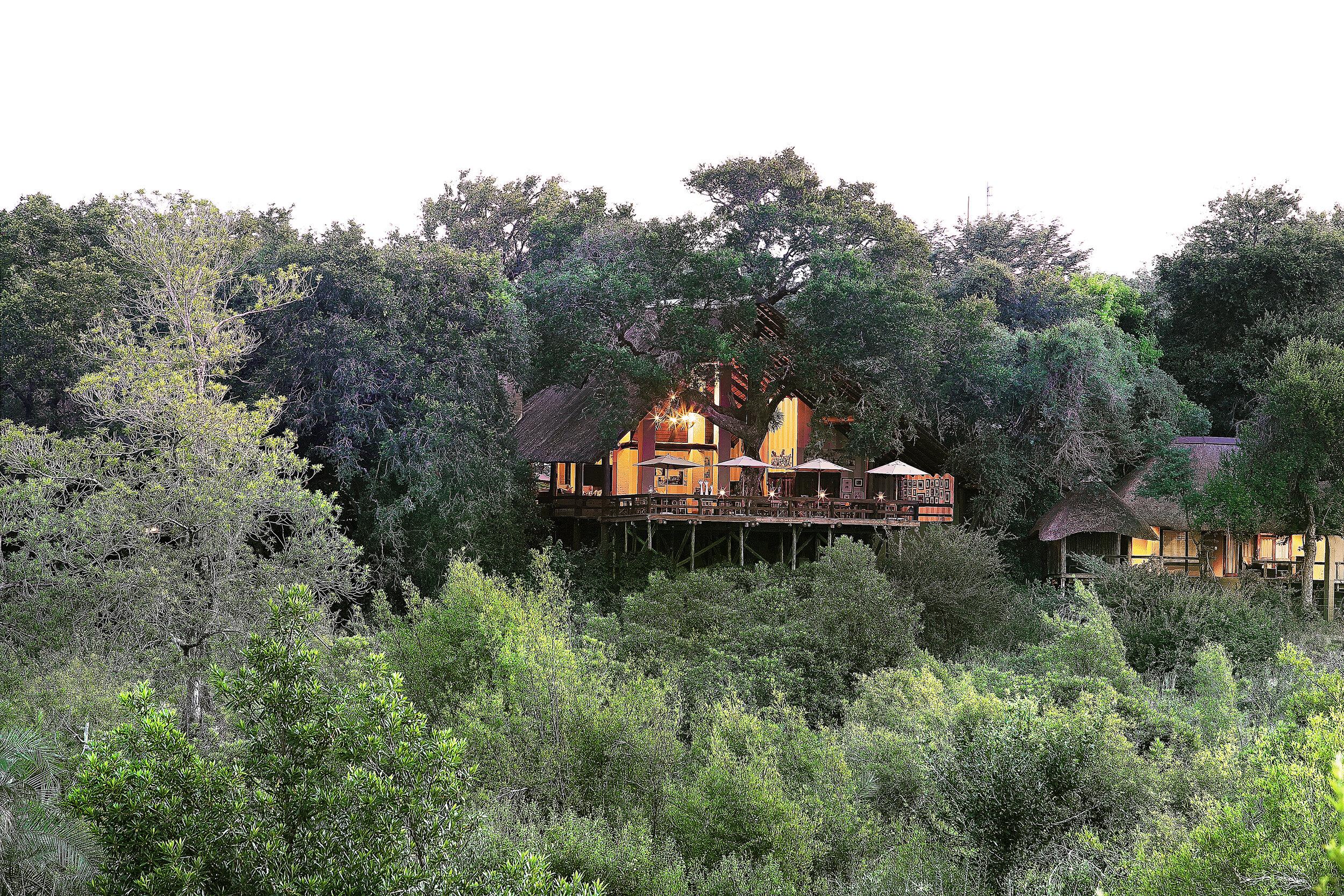 sabi sand game reserve - south africa - londolozi varty