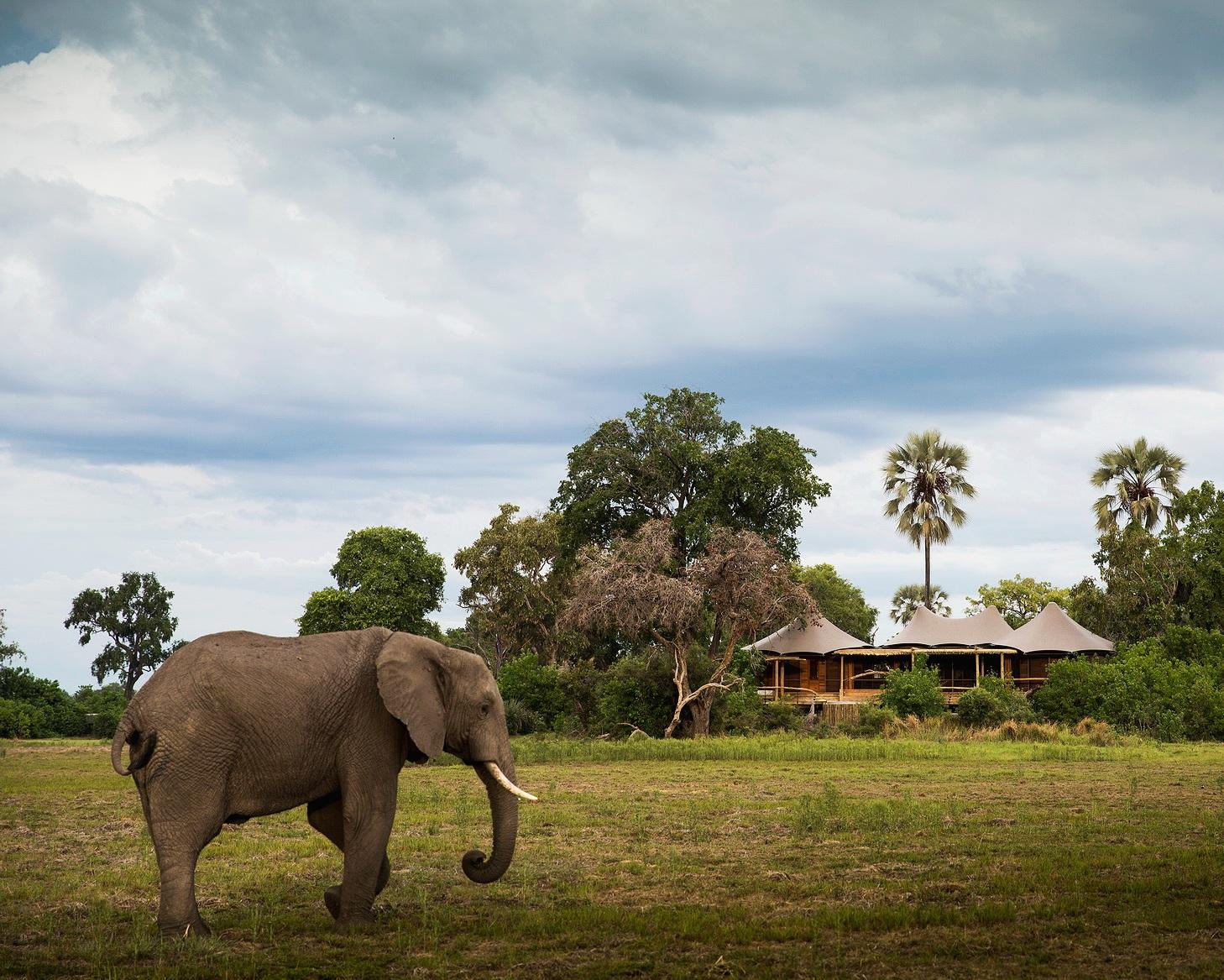 top stays - chobe national park - chobe national park