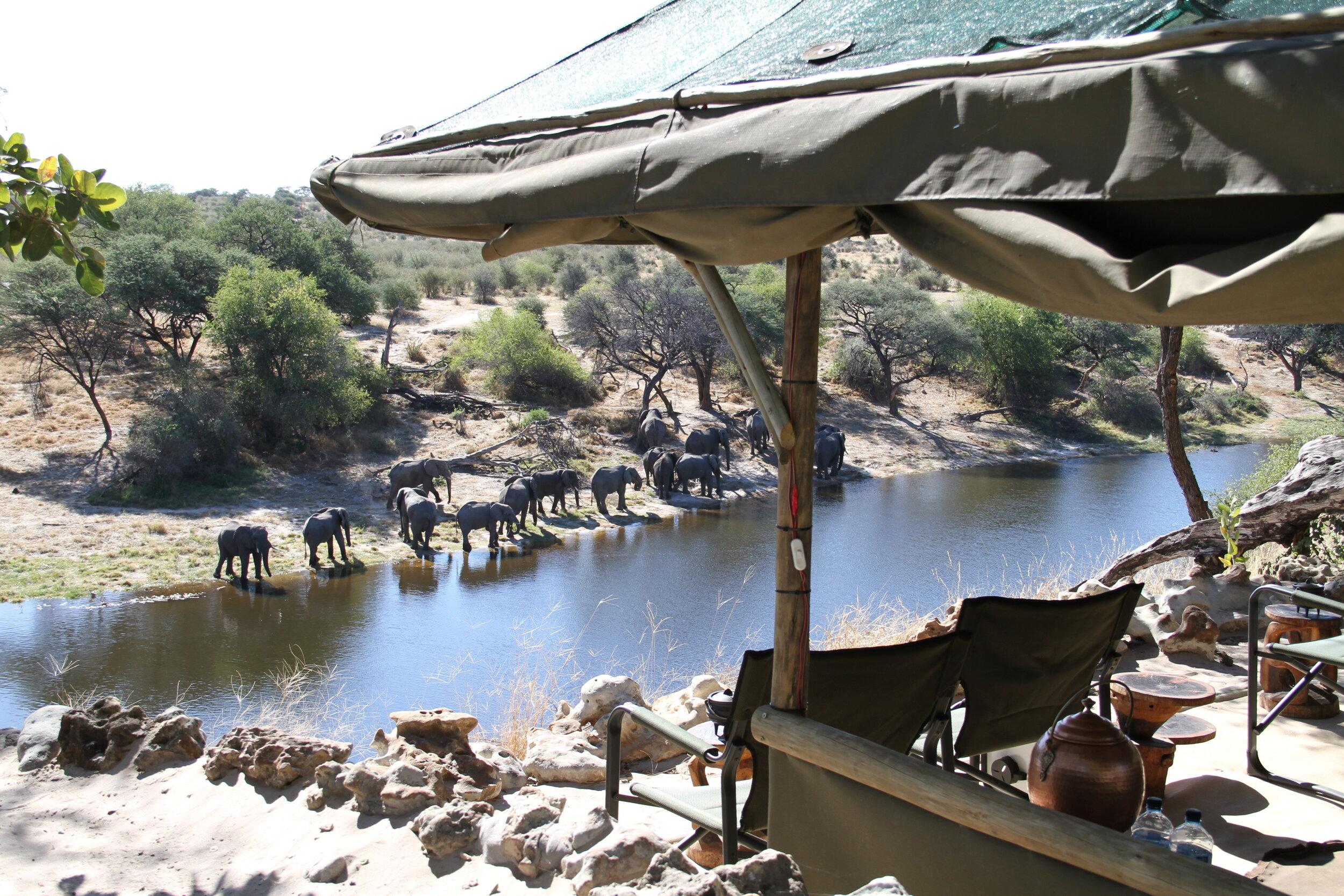 Makgadikgadi Pans National Park - botswana - meno a kwena