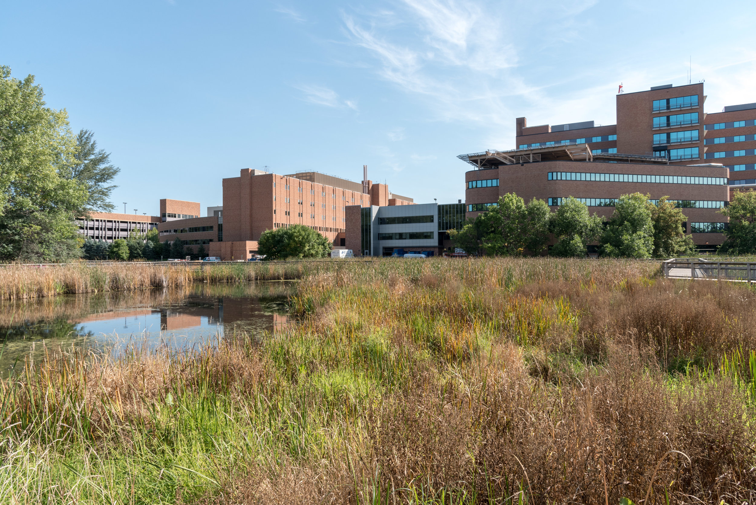 """A Peaceful Meander"" Summer 2018, Methodist Hospital, St. Louis Park, MN"