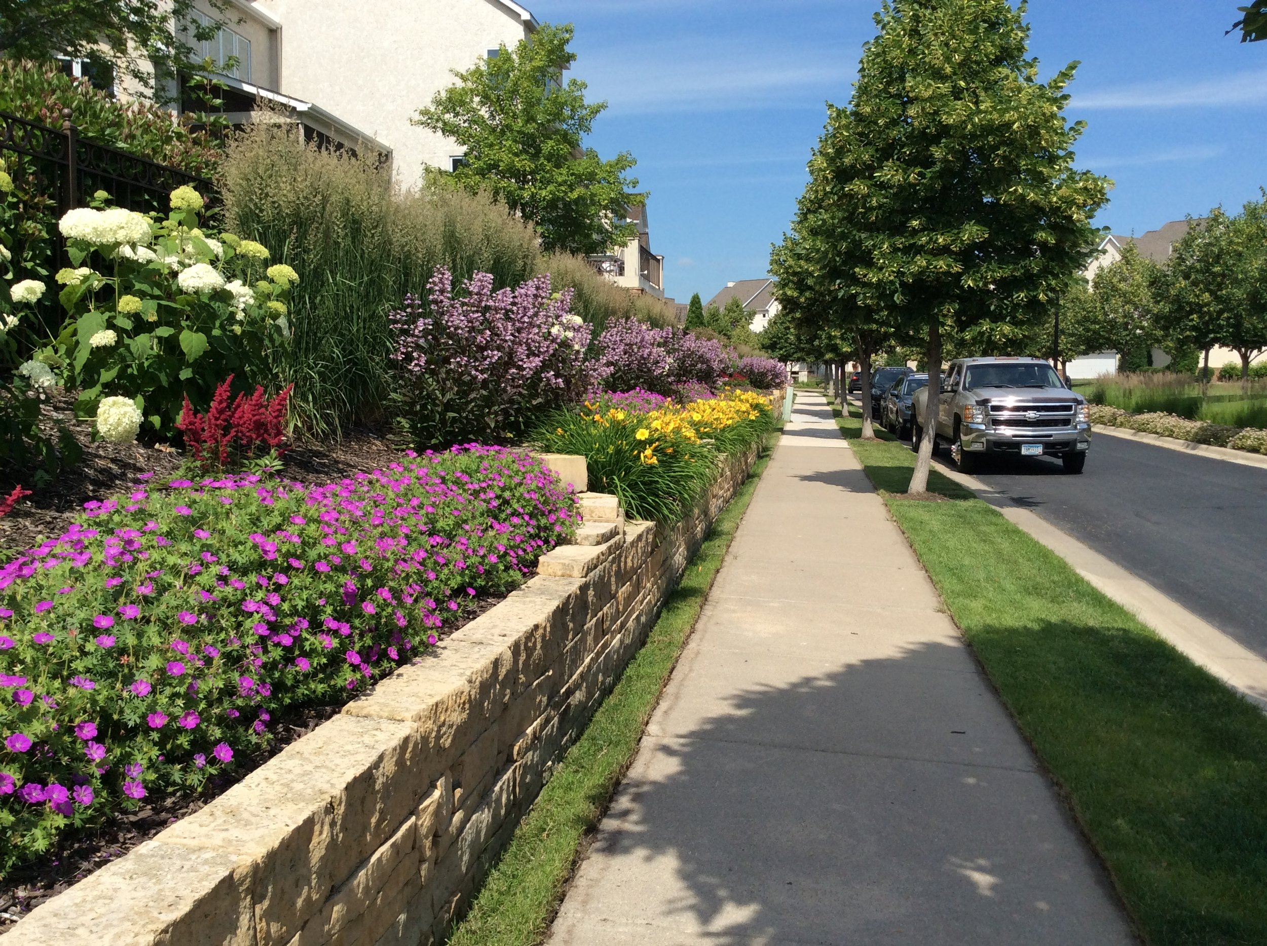 The Landings, Minneapolis MN. This multiyear renovation project required the Urban Land Care team to renovate the entire common area and redesign planted areas to remove junipers and replace them with perennial plants that included pollinator friendly plants, textures and color.