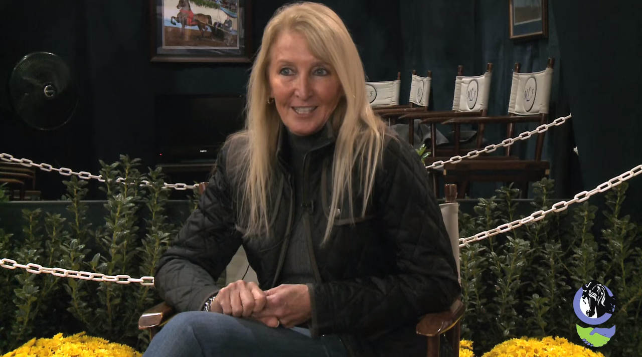 Jenny Taylor, a five-time winner of the Morgan Park Saddle World Championship, offers tips on show ring strategy as part of the video series produced by the American Morgan Horse Educational Charitable Trust and American Morgan Horse Association Young Adult Alliance.