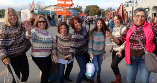 image borrowed from Kristy Glass' video   Tell Me About Your Rhinebeck Sweater 2018
