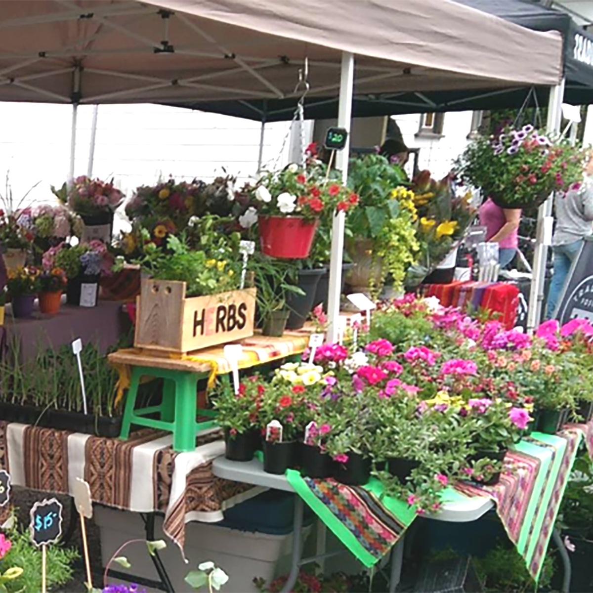 Photo Credit: Fort Langley Farmers Market