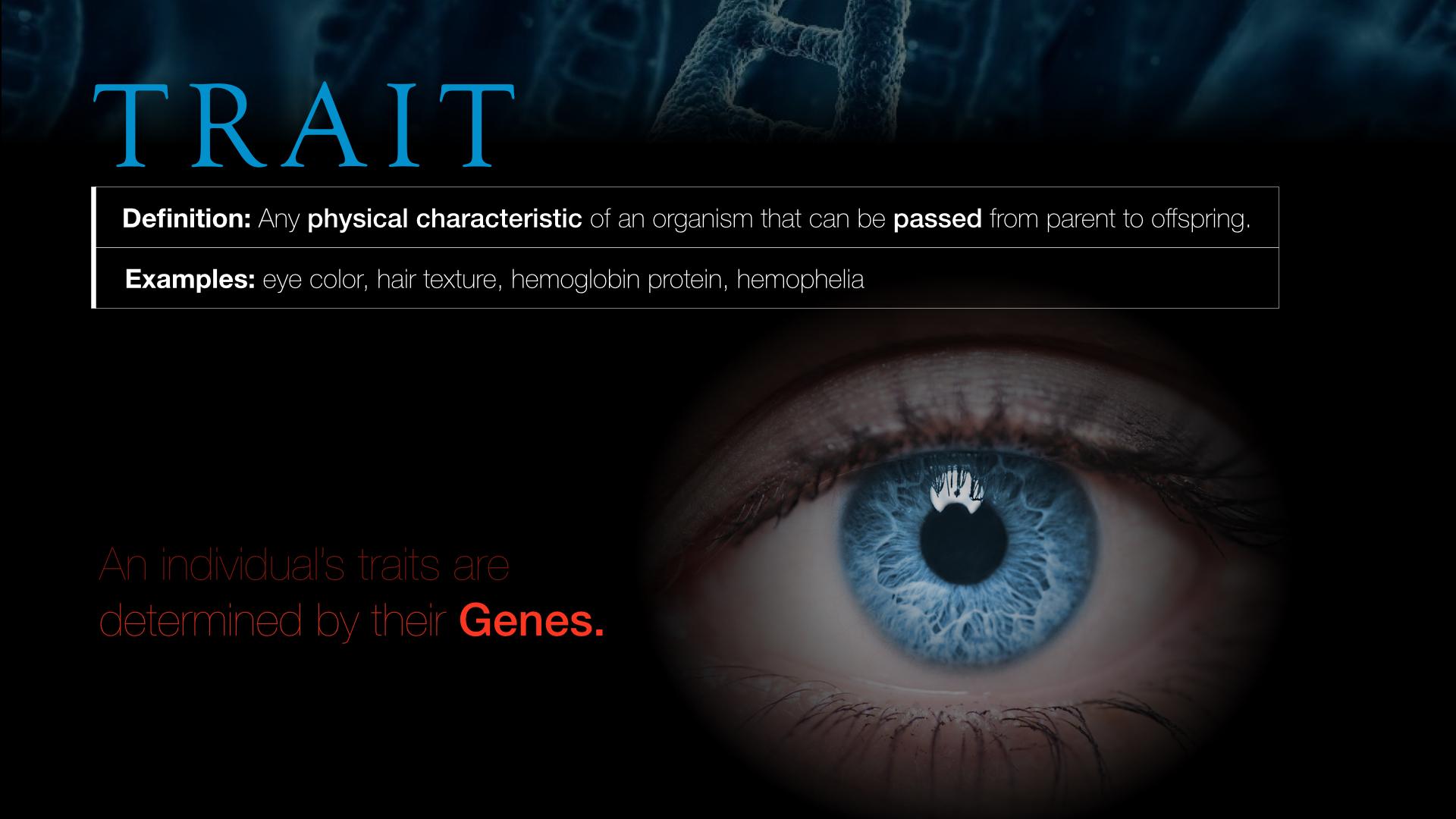 GENETICS.002.jpg