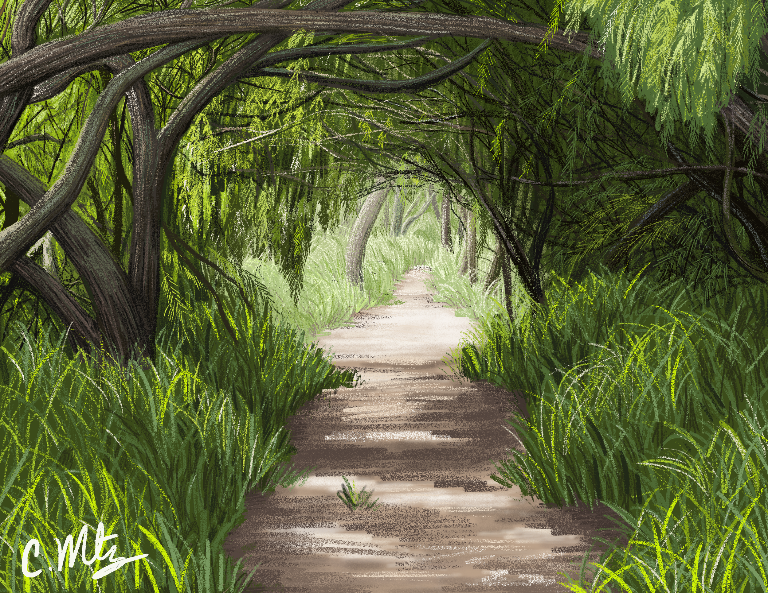 path-study-png version.png