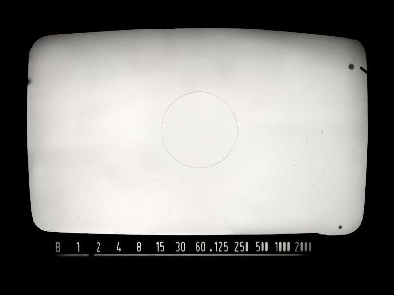 sitex-1.jpg