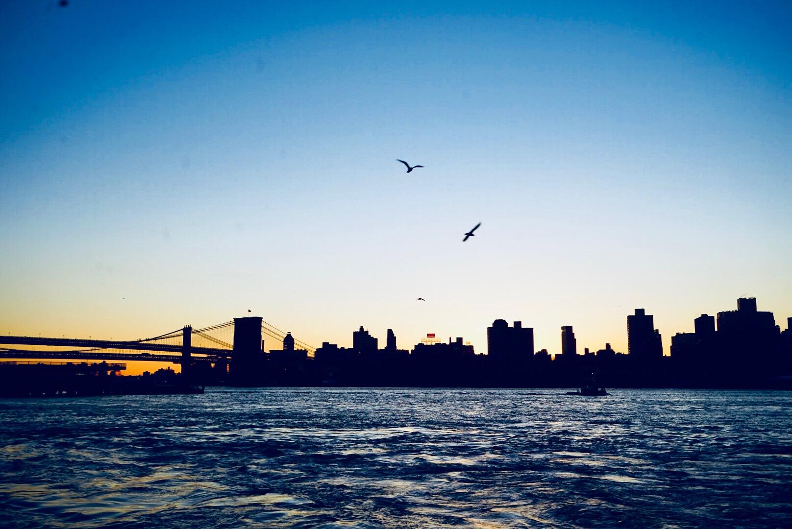 new-york-dish-you-were-here-nyc-luxury-food-travel (12).JPG