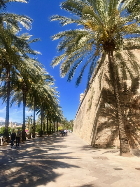 DISH DO PALMA - African influences and palm trees everywhere, its the culinary capital of the Balearics