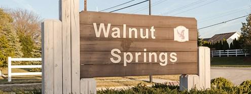 WalnutSpringsHeader.jpg