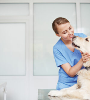 Young-female-veterinarian-in-blue-uniform-hugging-and-talking-to-white-fluffy-labrador-lying-on-table-during-check-up-300x336.jpg