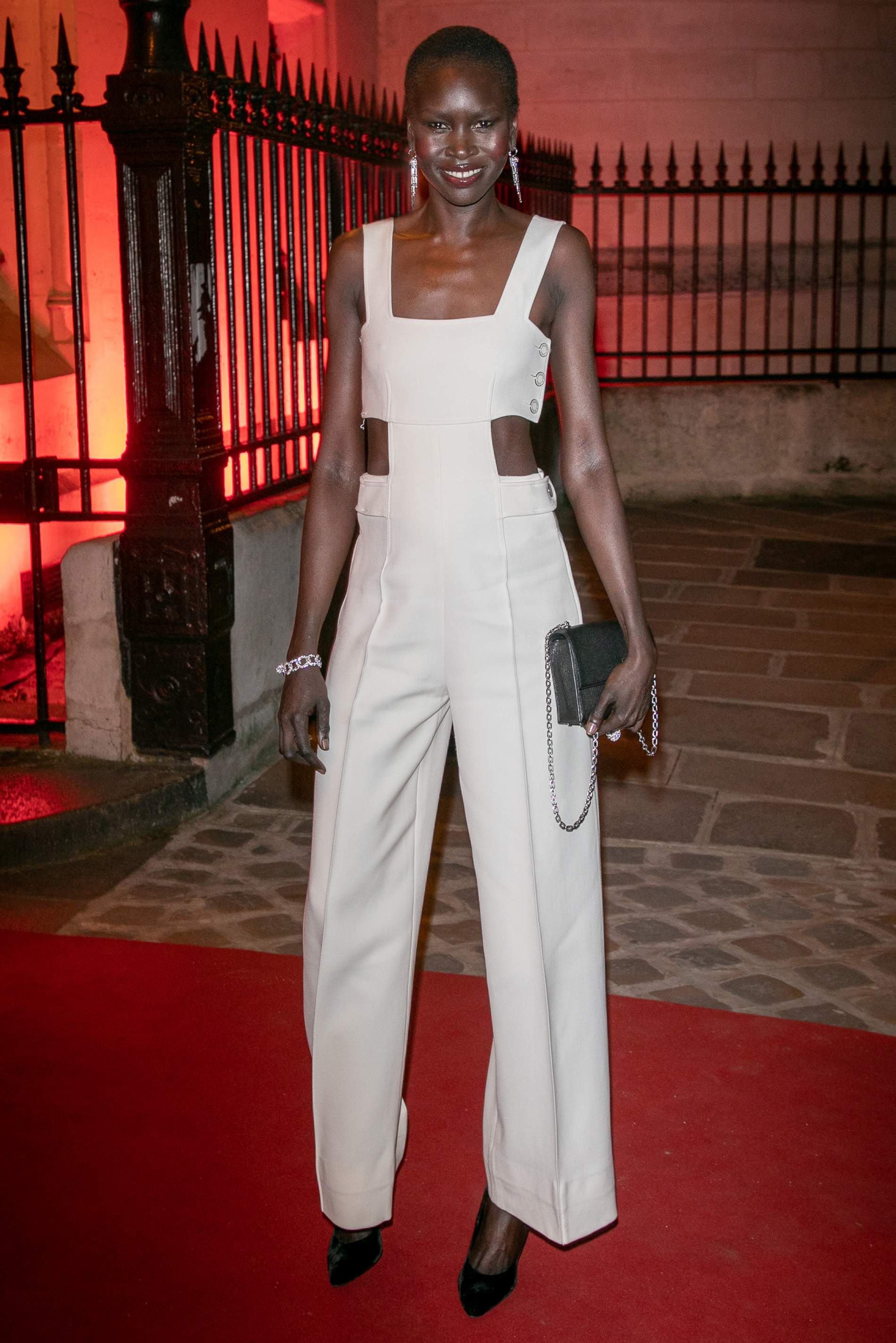 Alek-Wek-Cartier-Paris .jpeg