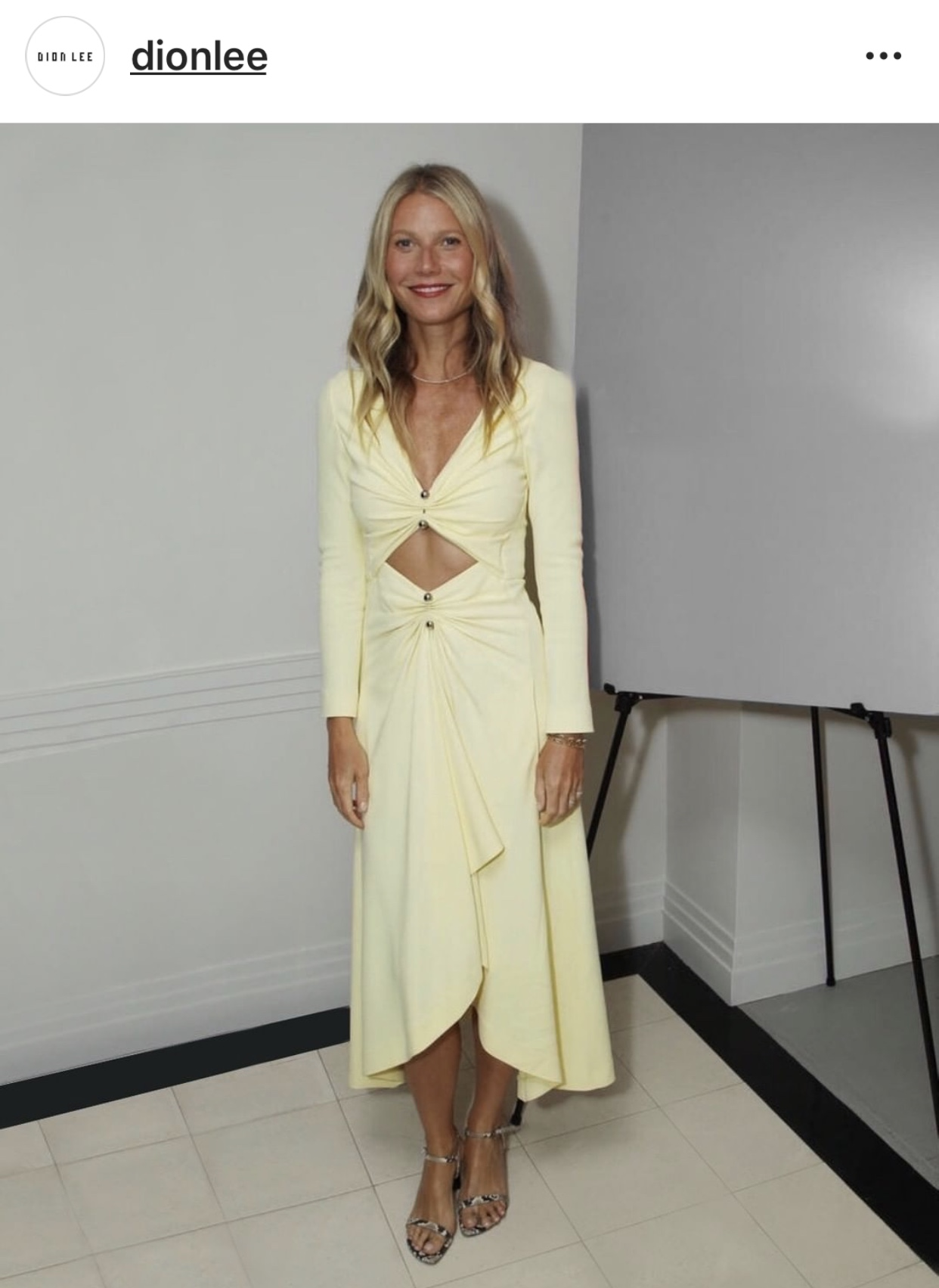 Gwyneth-Paltrow-in Dion-Lee -best-dressedjpg