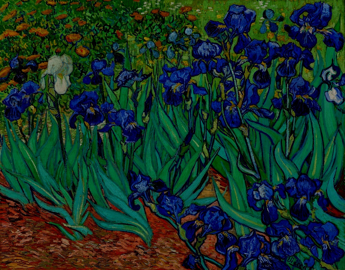 """""""Normality is a paved road; its comfortable to walk, but no flowers grow."""" - -Vincent Van Gogh"""