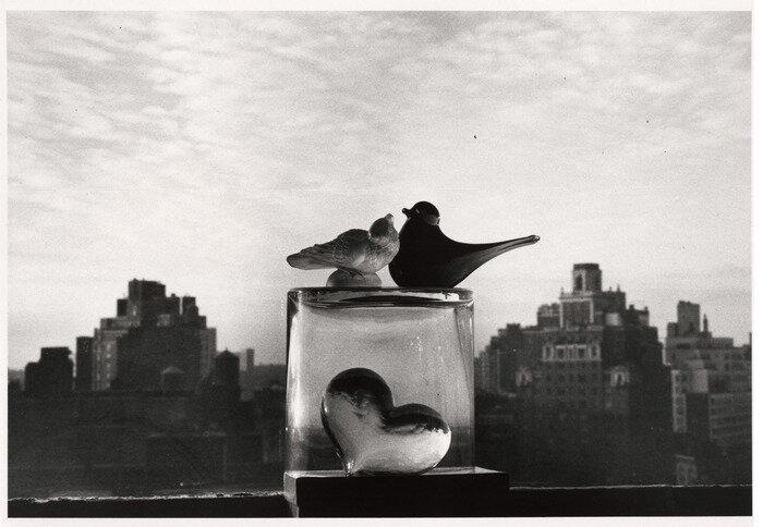 Glass Birds of New York by André Kertész (1978)