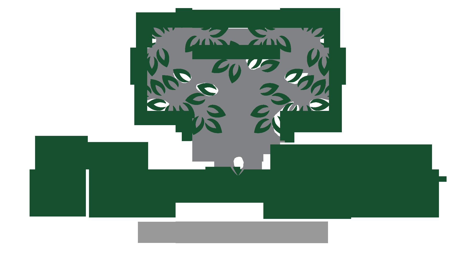 WOT-Logo-1.png