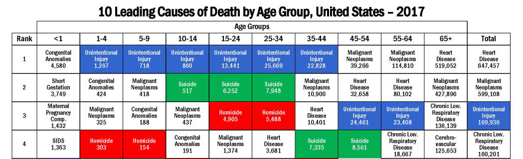 leading_causes_of_death_by_age_group_2017_1100w850h.jpg