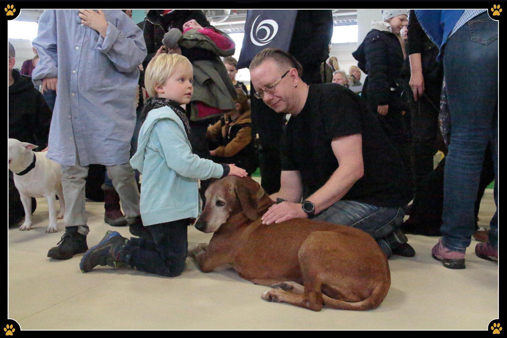 JoBaDog_Gruene_Woche_2019_Hunde_zum_Anfassen_4.jpg
