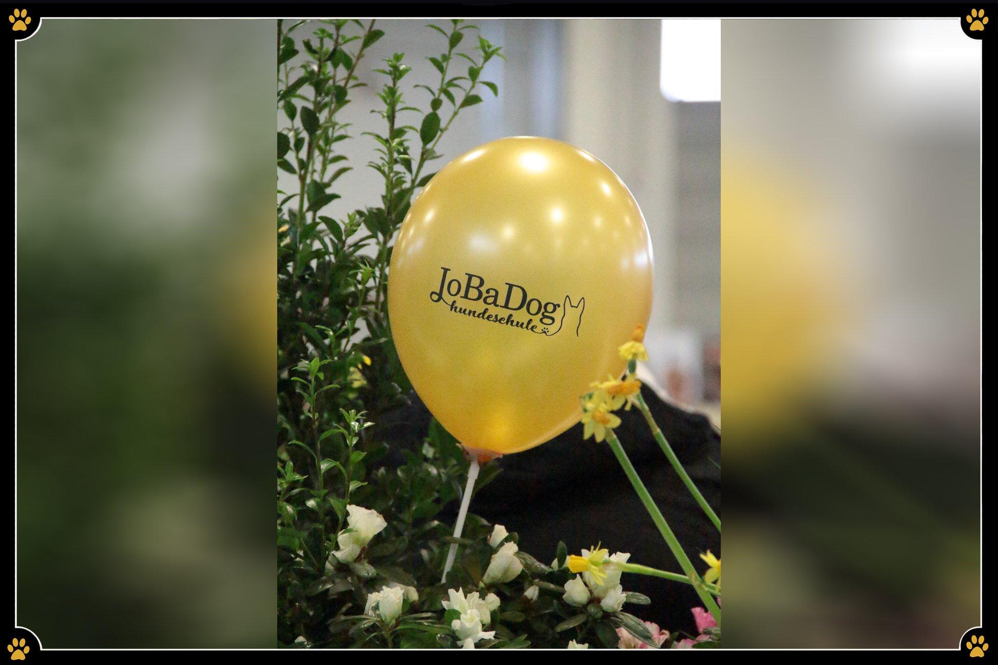 JoBaDog_Gruene_Woche_2019_Luftballon.jpg