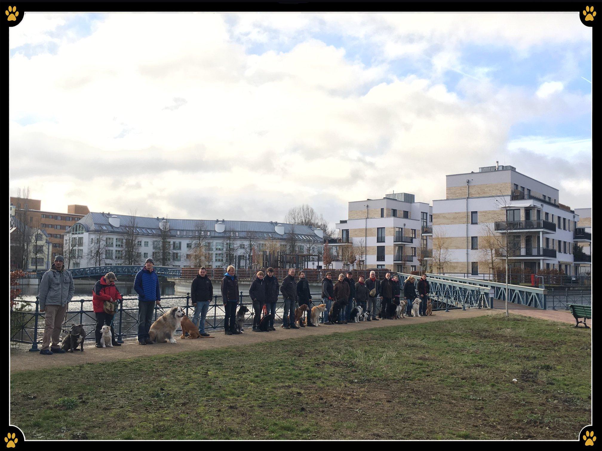 JoBaDog_Alltagstraining_05_Januar_2019_Berlin_Tegel_2.jpg