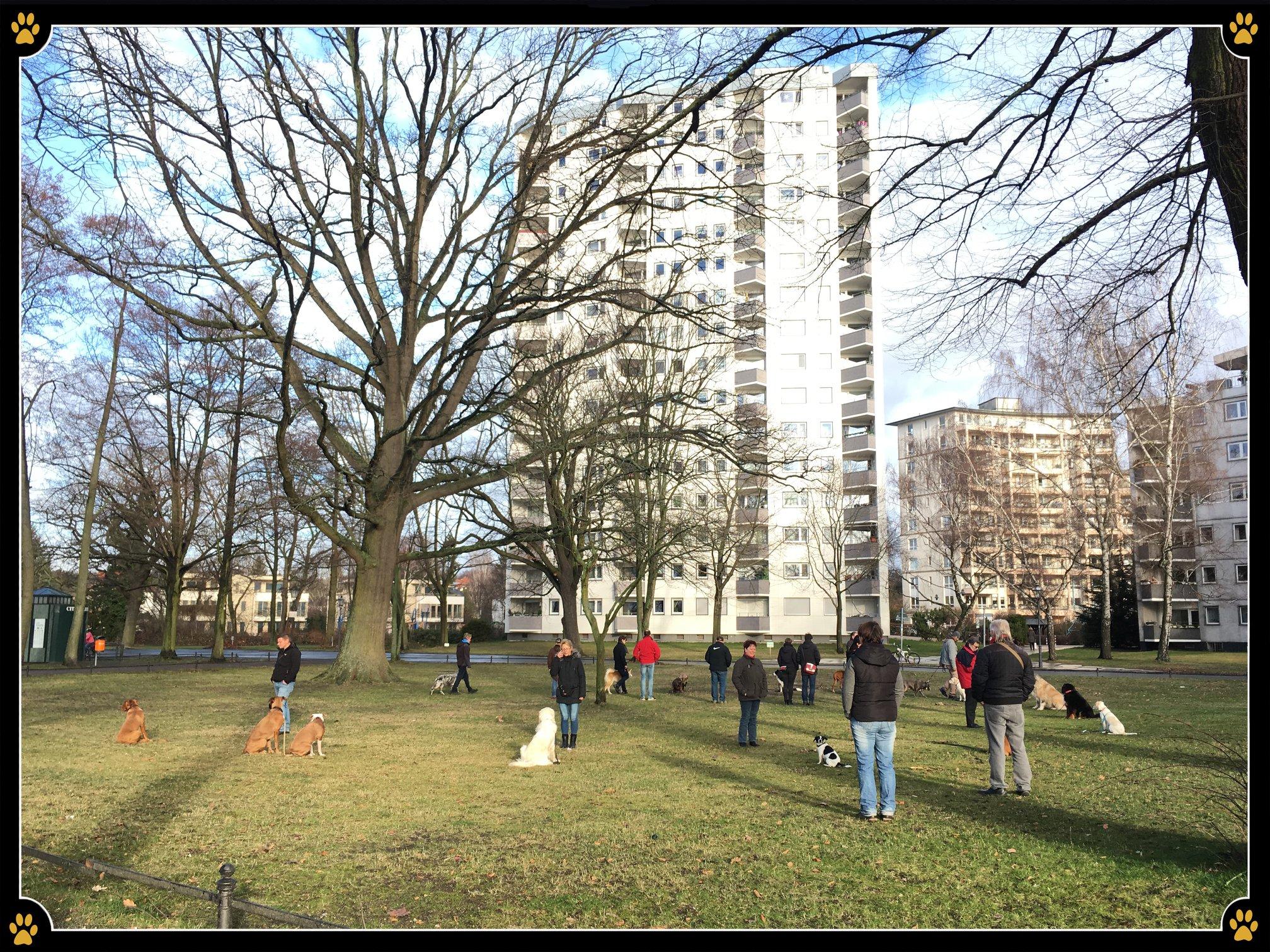 JoBaDog_Alltagstraining_05_Januar_2019_Berlin_Tegel_6.jpg