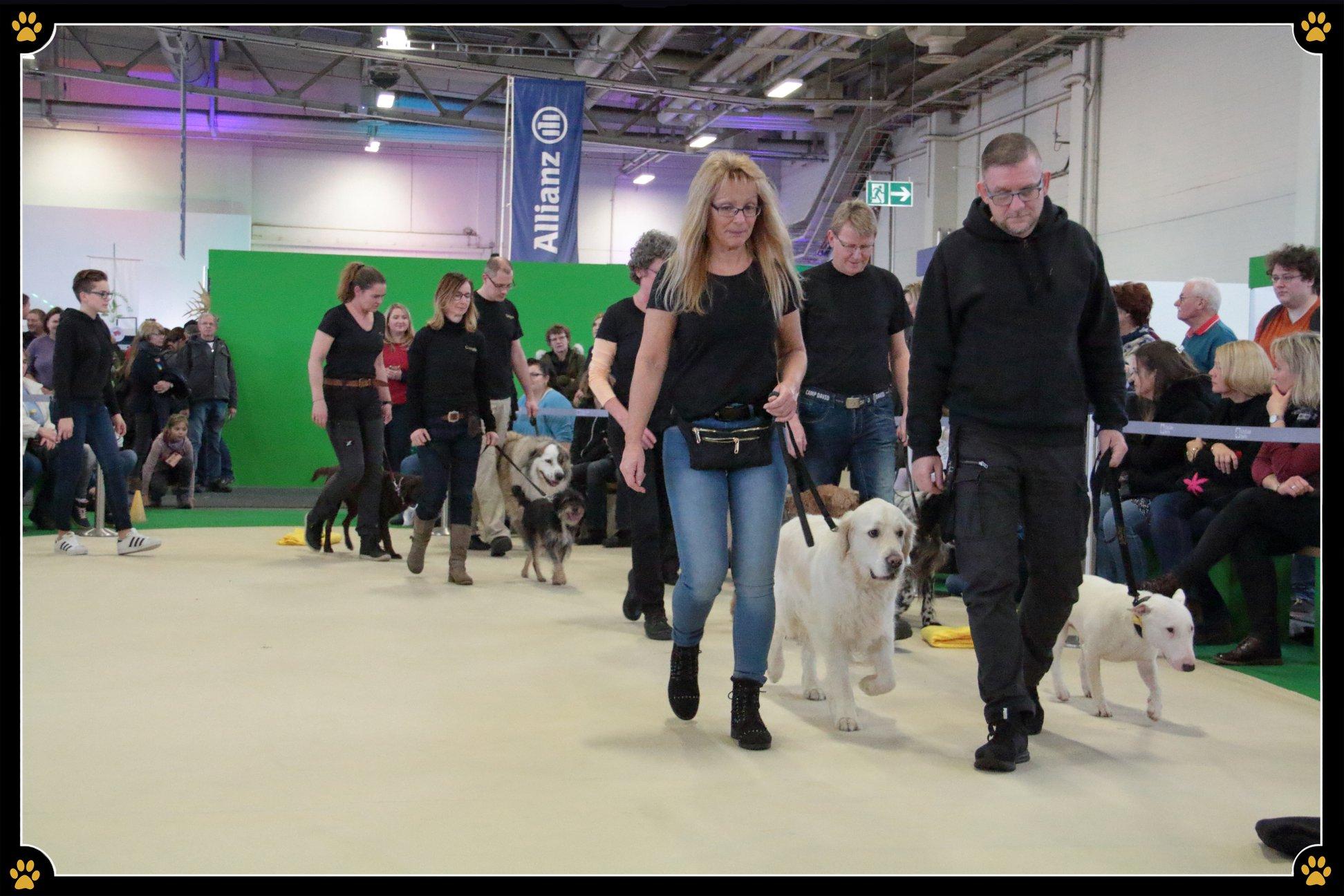 """""""Wenn Hund, dann richtig."""" - Auf der internationalen Grünen Woche Berlin zeigte JoBaDog dieses Wochenende, dass ein Hund auch hören kann, wenn andere Vierbeiner in der Nähe sind. 🐩Die Gruppenaufführung faszinierte die Zuschauer und gab einen Einblick in den Alltag mit einem gut erzogenen Vierbeiner. Die stolzen Hund-Mensch-Teams zeigten unter anderem das Fuß-Laufen, das Sitzen oder Liegen lassen des Hundes und die benötigte Menge an Konzentration die es braucht, damit der Vierbeiner nicht der Bratwurst aus dem Publikum hinterherläuft. 😜Haben Sie unsere Hundeshow verpasst? Kein Problem! 🐶Am Samstag, dem 26.01.2019, tritt JoBaDog, von 13:30 – 14:30 Uhr in der Heimtierhalle 26b, noch ein weiteres Mal auf und zeigt den Richtigen Umgang mit dem Vierbeiner – denn """"Wenn Hund, dann richtig."""". 🐾"""