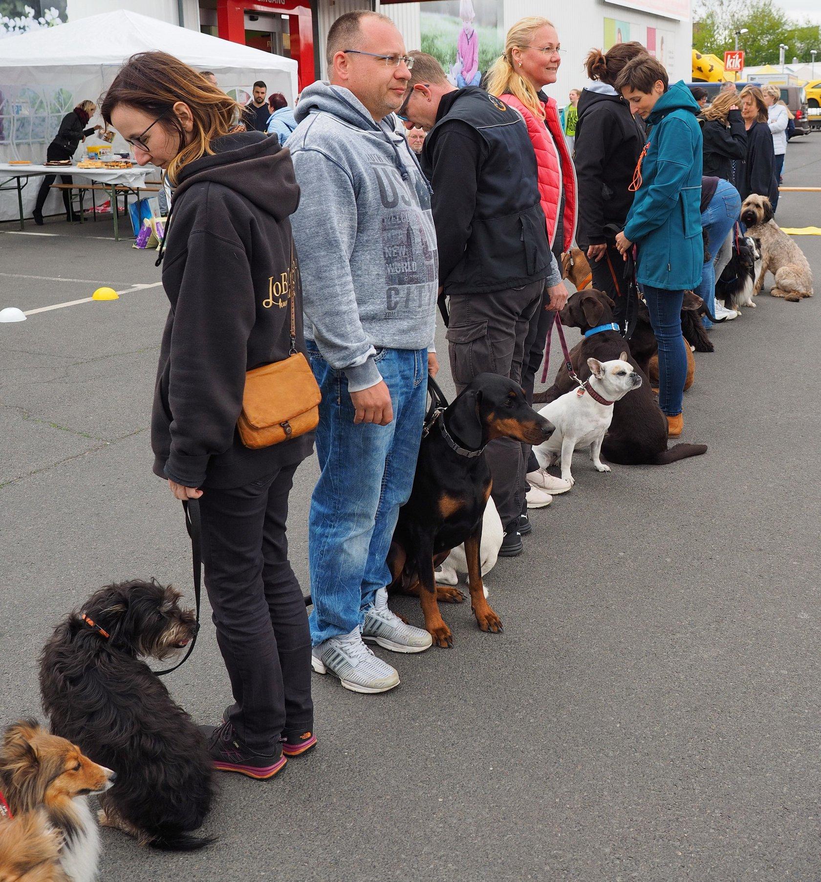 JoBaDog_Frühlingsfest_Fressnapf_Oranienburg_2019_7.jpg