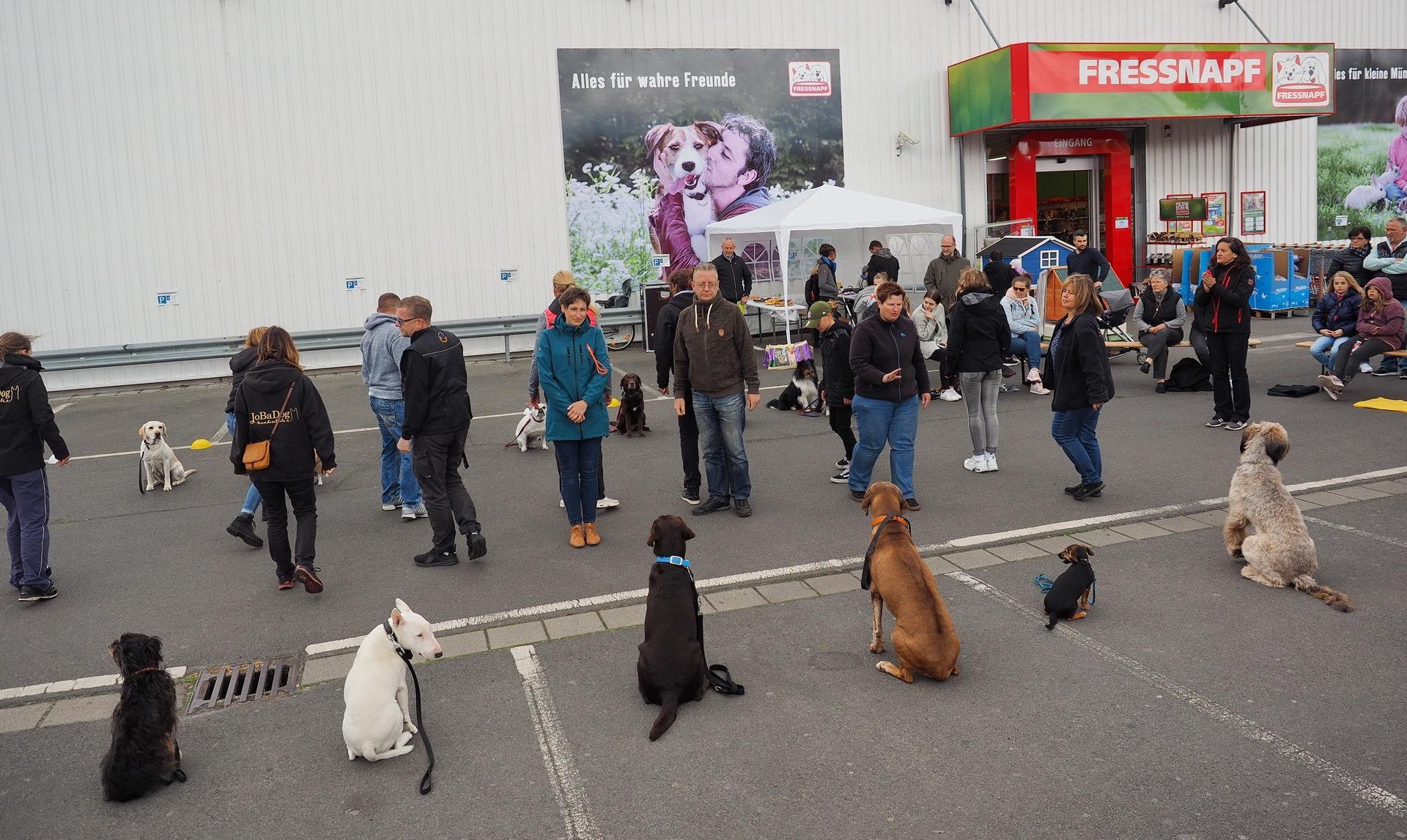 JoBaDog_Frühlingsfest_Fressnapf_Oranienburg_2019_12.jpg