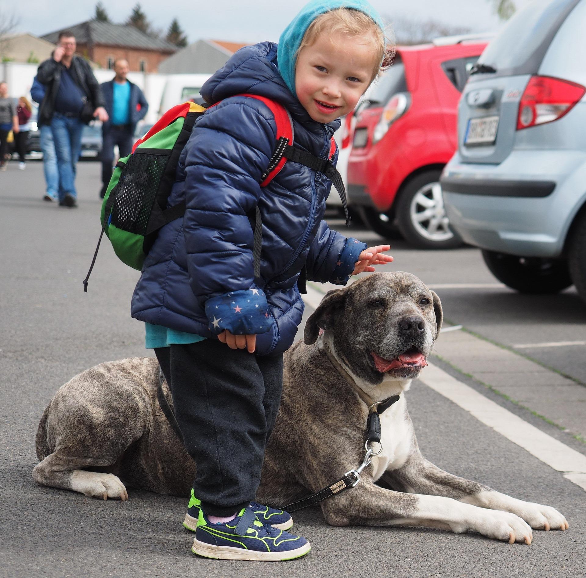 JoBaDog_Frühlingsfest_Fressnapf_Oranienburg_2019_49.jpg