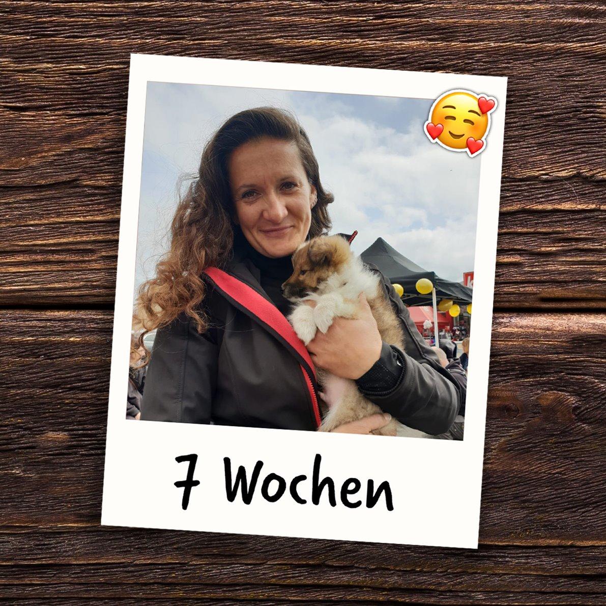 22. – 28.April In Woche 7 begleitete Duke mich erstmal auf der JoBaDog-Hundeshow des Fressnapf Frühlingsfestes in Oranienburg!🐾