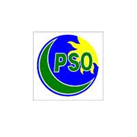 pso.png