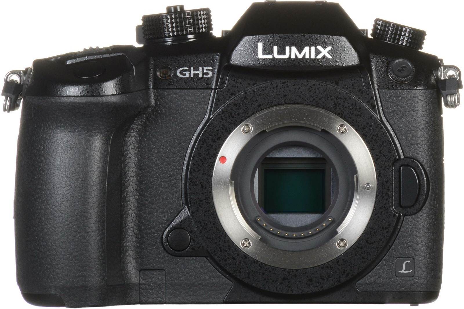 panasonic-lumix-gh5-body-4k-video-60fps--dc-gh5eg-k_12.jpg