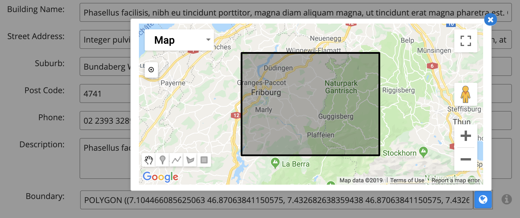 Google map in Skyve default interface