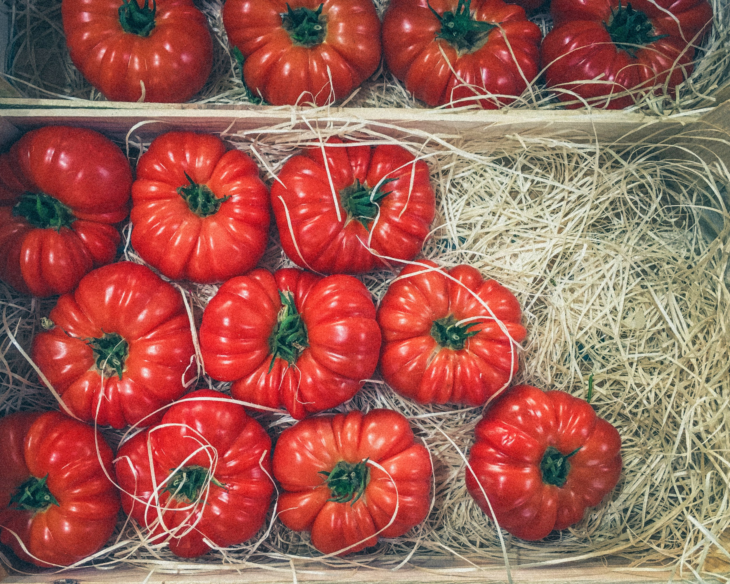 French Tomatoes