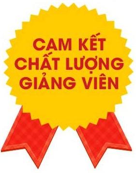 Cam Ket chất lượng giảng viên tại English Hanoi