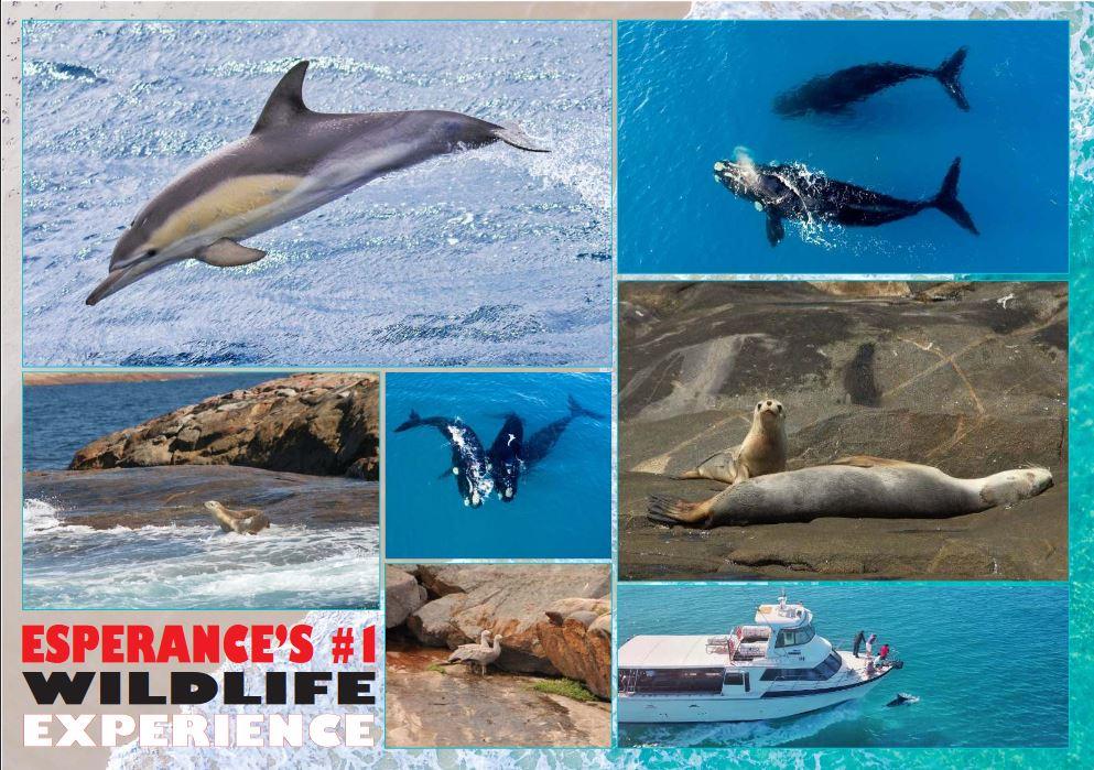 Esperance Island Cruises.JPG