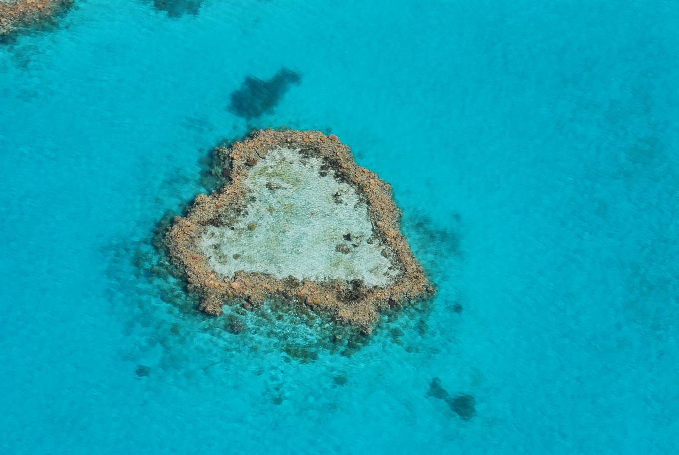 heart-reef.jpg
