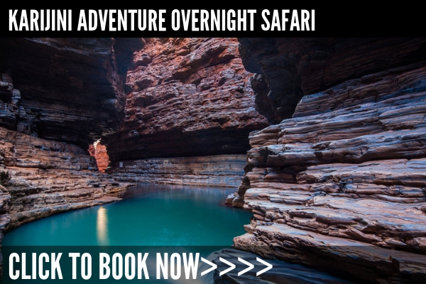 Departing Broome, this overnight tour is a brilliant Showcase of Karijini - Duration: 2 days, from AU$2080click here for full details>>