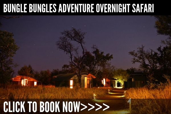 Scenic Flight, Helicopter Ride, 4x4 and Walking Tour + Overnight Stay - Duration: 2 days, from AU$2030Click here for full details>>