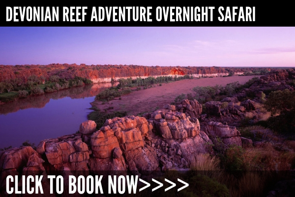 Windjana Gorge, Tunnel Creek, Mimbi Caves, Geikie Gorge boat tour and overnight stay - Duration: 2 days, from AU$1995Click here for full details>>