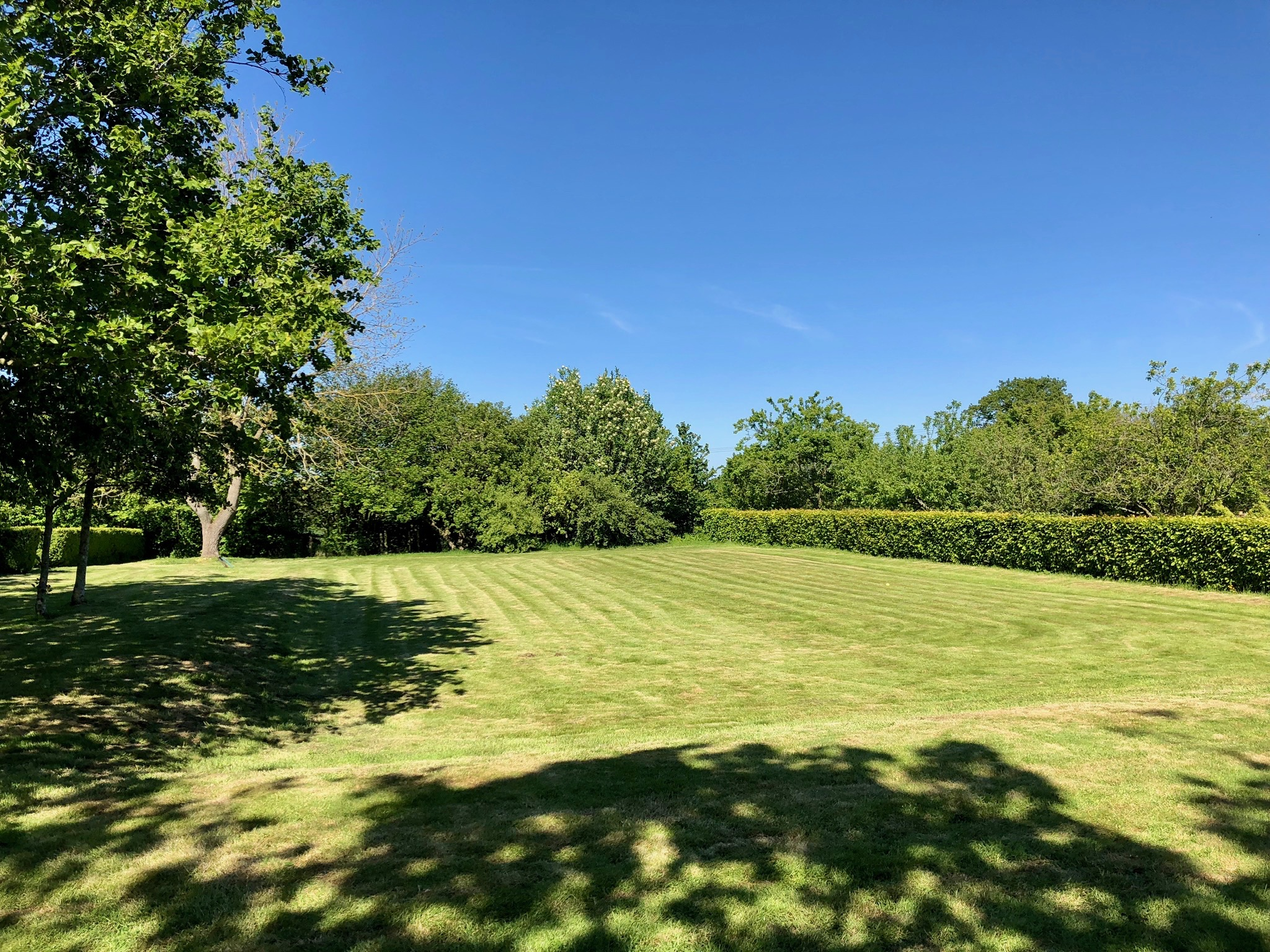 There's something very satisfying about freshly mown grass. This shot was taken in the middle of May.