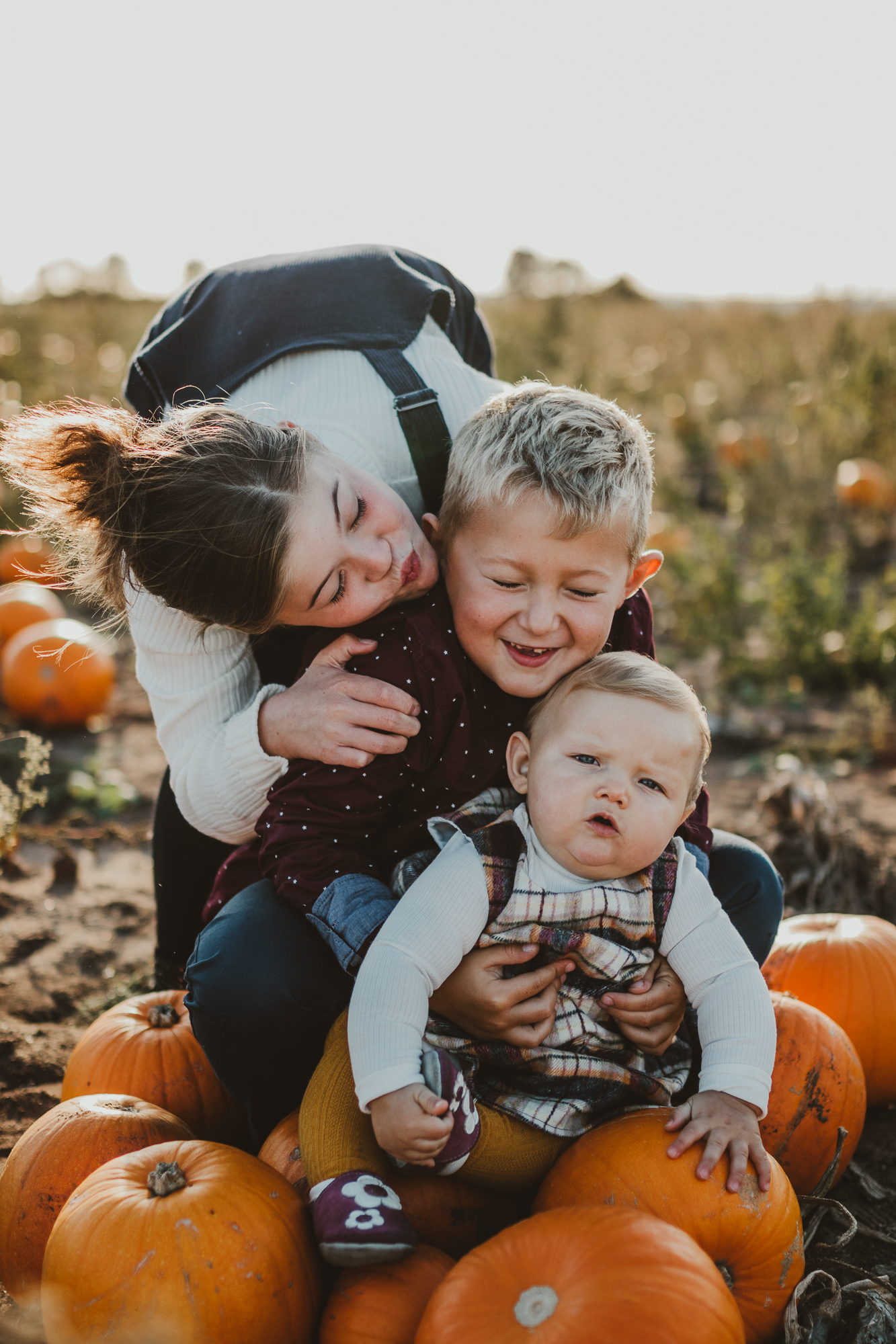 Hello, pumpkins! - Absolutely love the photos from the pumpkin field, josey was amazing with my children, they want to know when they can do it again - Faye Ann Revill