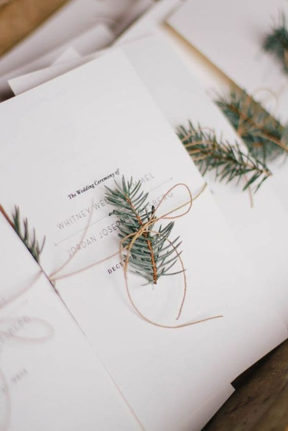 Programs with a Touch of Pine - via Pinterest