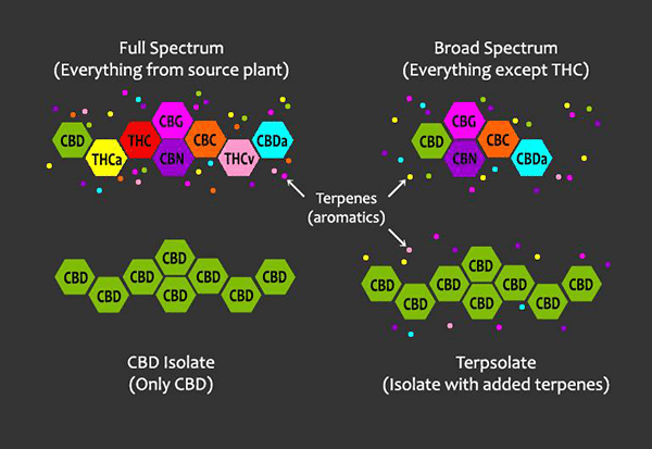 full-spectrum-broad-spectrum-isolate-molecules.png