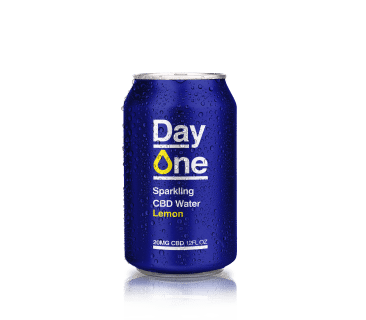 673080611.day_.one_.-.lemon_.1.-366x320.png